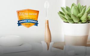 Radius Source geriausias metų dantų šepetėlis